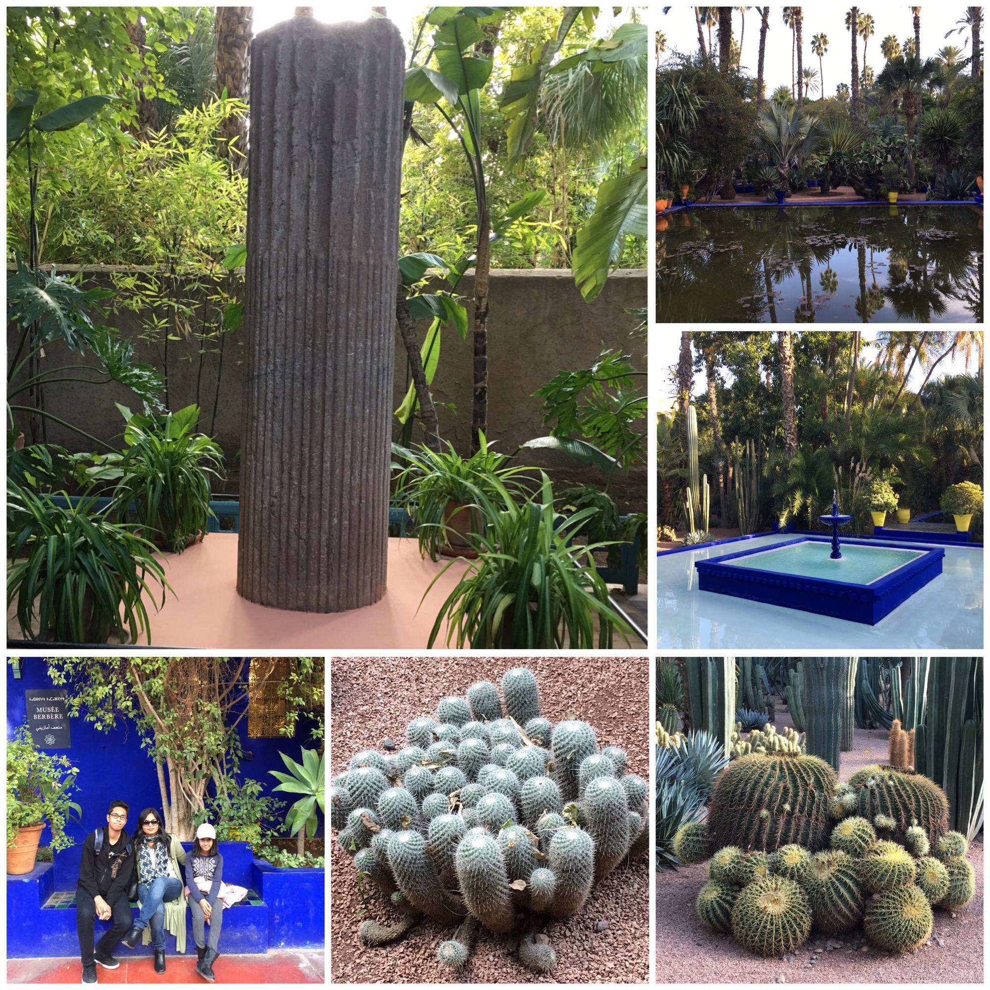 Jardin Yves Saint Laurent Marrakech: Jardin Majorelle In Marrakech-Is It Worth Visiting
